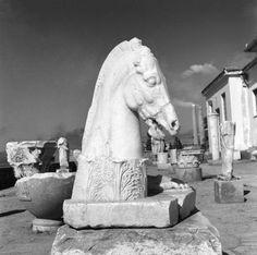 Ελευσίνα, 1955 Νικόλαος Τομπάζης
