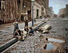 Kids playing near a dead horse NYC, 1900s