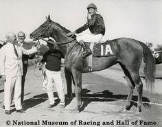 Buckpasser - Horse of the Year 1965