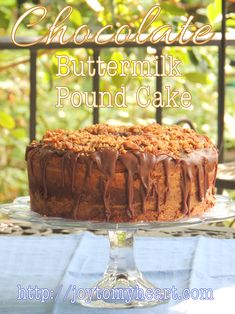 Chocolate Buttermilk Pound Cake is our favorite, especially if you& a chocolate lover. I made icing last night but it is perfect without. Trust me! Just Cakes, Cakes And More, Chocolate Buttermilk Pound Cake Recipe, Pound Cake Recipes, Pound Cakes, Just Desserts, Dessert Recipes, Milk Cake, Strawberry Cakes