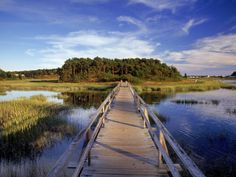 Uncle Tim's Bridge, Wellfleet, Cape Cod, MA Photographic Print    art.com