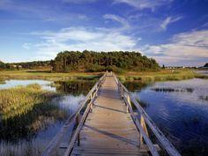 Uncle Tim's Bridge, Wellfleet, Cape Cod, MA Photographic Print    art.com