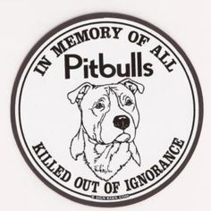 Pitbull Terrier Attitudes are changing precious Pit Bull Terriers--because of humane intervention. I Love Dogs, Puppy Love, Pitbulls, Pit Bull Love, Pitbull Terrier, Bull Terriers, Pitbull Pups, Pitbull Facts, Dog Quotes