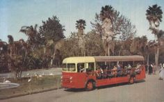 San Diego Zoo tour bus circa 1950 | I enjoyed our school field trips in the '50s thru early '60s.