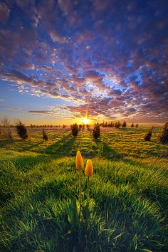 Until Then | Wisconsin Horizons By Phil Koch.