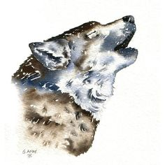 Watercolour sketch - Howling Wolf by Gillian McMurray