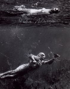 WHAT A SHOT, JULIE ADAMS AS KAY LAWRENCE FROM THE 1954 FILM CREATURE FROM THE BLACK LAGOON. 8 X 10 PHOTO SIGNED BY THE LOVLEY JULIE ADAMS