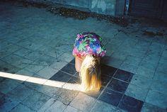 by Lukasz Wierzbowski (neon.tambourine, via Flickr)