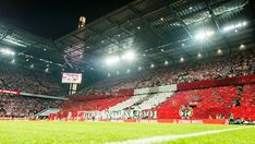 All info, news and stats relating to FC Köln in the Bundesliga season Basketball Court, Soccer, Club, Sports, Hs Sports, Football, European Football, Sport, Soccer Ball