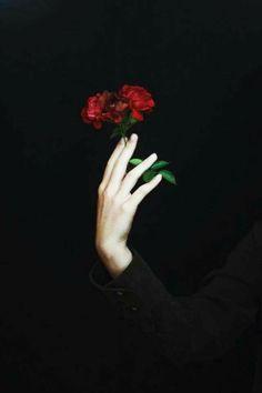 source : facebook ✤ photographie contemporaine couleur noire obscur à fleur (black flower photograph)