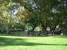 Old Poway Park. Steam train runs 10-4, 12/7. No reservation required for picnic. No bounce houses allowed.