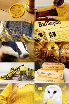 The Real Harry — totouchthefiretwice: Harry Potter Aesthetics:. Harry Potter World, Objet Harry Potter, Theme Harry Potter, Harry Potter Love, Harry Potter Universal, Harry Potter Fandom, Harry Potter Memes, Harry Potter Hogwarts, Harry Potter Tumblr