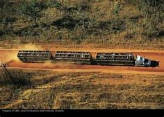 SEMI TRUCK CATTLE TRAIN - KIMBERLEY AUSTRALIA