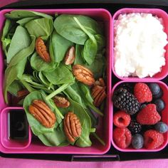 BentoWare Laptop Lunches brings efficient meal packing for on-the-go adults to a new level.  Try one of their lunch boxes for perfect portion sizes every time!
