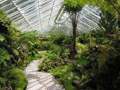 Ascog Hall Gardens and Fernery
