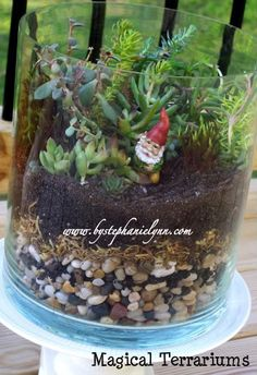 Building a Terrarium {Got Gnomes?}  I think there is something so magical and whimsical about terrariums. Aside from their gorgeous natural beauty, they are extremely easy to care for making them a perfect addition to your home decor.