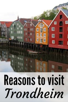 Trondheim is an often-overlooked city in Norway. But you should totally add it to your Norway itinerary! Here are all the best things to do and eat in Trondheim. Oh The Places You'll Go, Cool Places To Visit, Places To Travel, Europe Travel Tips, Travel Guide, Travel Destinations, Oslo, Jotunheimen National Park, Capital Of Norway