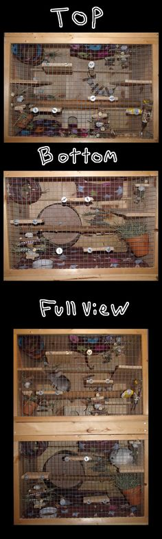 Chinchilla Cage by AwesomeKady on deviantART Pet Rodents, Pet Rats, Chinchilla Care, Hay Feeder, Hamster Toys, Degu, Pet Gear, Guinea Pigs, Deviantart