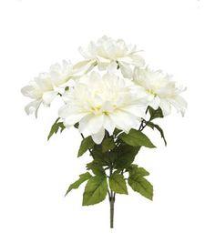 Blooming Autumn 21'' Dahlia Bush-Cream