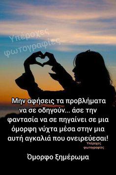 Love, Amor, I Like You