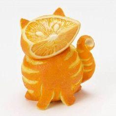 un chat en agrumes