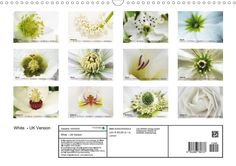 White Calendar on Calvendo, UK Version also available German version) - JUSTART