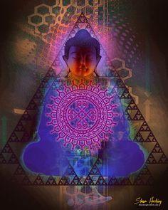 Shaun Hawking Buddha