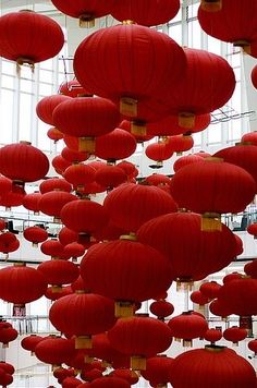 Red Paper Lanterns. Would love to have these in a future home, they are so neat!