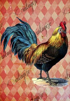 $2.75 Vintage  Victorian French Rooster. Printable Digital Image Download for  Cards, Fabric Transfer, etc.