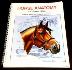 Horse Anatomy A Coloring Atlass by Robert Kainer and Thomas's McCracken horses  #Textbook