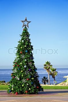 Holiday Christmas Tree Decorating A California Travel And Vacation ...