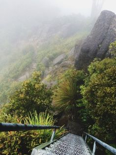 NZ Roadtrip: The Pinnacles Walk, Coromandel, New Zealand