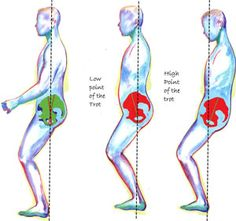 very good article on tips on how to ride the sitting trot, give it a read :)