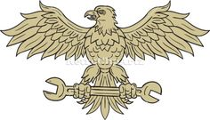 American Eagle Clutching Spanner Drawing Vector Stock Illustration. Drawing sketch style illustration of an american bald eagle looking to the side clutching spanner with its talon set on isolated white background viewed from front. #illustration  #AmericanEagleClutching