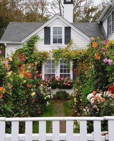 cottage garden Cottage exterior, Home - gardencare Style Cottage, Cottage Homes, English Cottage Style, English Country Gardens, White Cottage, Cottage Design, Garden Cottage, Home And Garden, Garden Art