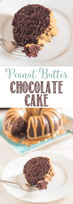 Peanut Butter Chocolate Cake Recipe | Easy doctored cake mix | moist and delicious cake