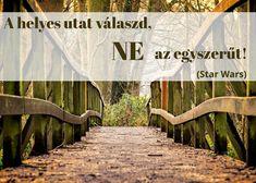 idézet a természetről - környezettudatosság Motivating Quotes, Facts, Motivation, Life, Quotes Motivation, Inspiration
