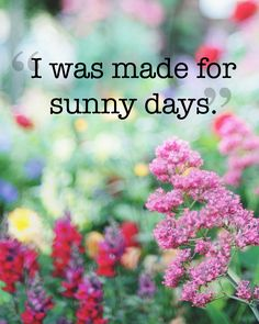 12 Absolutely Beautiful Quotes About Summer