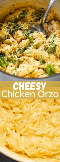 Quick, delicious, and hearty Cheesy Chicken with Orzo is a meal that everyone loves. A simple recipe prepared with perfectly seared chicken and orzo pasta coated in a creamy and cheesy sauce. It's ready in under 30 minutes and you'll only need one pan to get it done! #chickendinner #pastarecipes