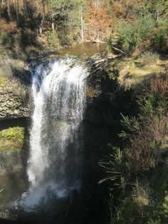 Tarraleah Falls very pretty, well worth the walk. Pic doesn't do the falls justice, Australia Living, Tasmania, North West, West Coast, Traveling By Yourself, Landscapes, Spiritual, Island, Spaces