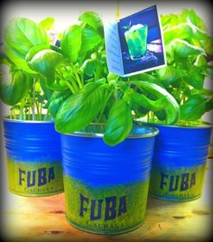 "Most of us agree that good, fresh ingredients make the best drinks... So what about ""growing your own"" ? We'll be hand-delivering these hand-painted Basil pots into a few cocktail bars around Dublin, so if you spot one of them make sure to order a Fubá Smash! A delicious combination of fresh lemon, basil leaves and Fubá Cachaça!"