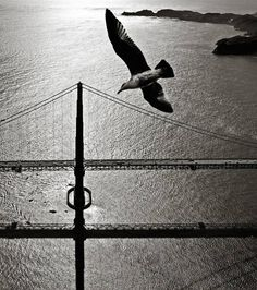 40's Photography of San Francisco