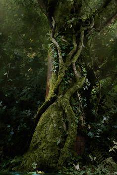 fairy tree by bkhook