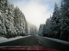 Winter - Mt. Seymour (Photo by Aryan Baines)