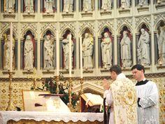 What the Latin Mass Taught this Novus Ordo Catholic Spiritual Words, Spiritual Life, Fulton Sheen, Sign Of The Cross, True Faith, Moment Of Silence, Eucharist, Love The Lord, Roman Catholic