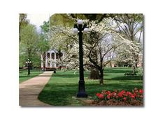 Spring at Ole Miss