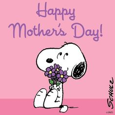 Happy Mother's Day from Snoopy! Images Snoopy, Snoopy Pictures, Peanuts Images, Happy Mother Day Quotes, Mother Day Wishes, Happy Mothers Day Friend, Peanuts Cartoon, Peanuts Snoopy, Snoopy Cartoon
