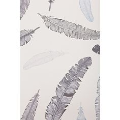 Walls Need Love Grey Goose Feather Removable Wallpaper ($68) ❤ liked on Polyvore featuring home, home decor, wallpaper, grey wallpaper, stick wallpaper, grey home decor, removable wallpaper and peelable wallpaper