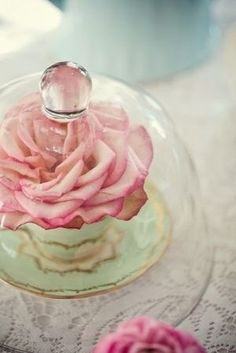rose in mint cup and sauce under bell jar