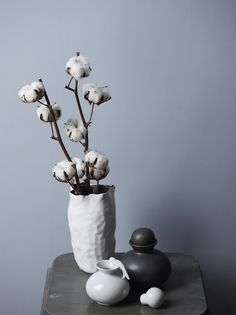 love this, and cotton stems are available at Brick Street Antiques Jotun Paint, Interior Styling, Interior Decorating, Cotton Blossom, Cotton Plant, Ikebana, Dried Flowers, Flower Pots, Interior And Exterior